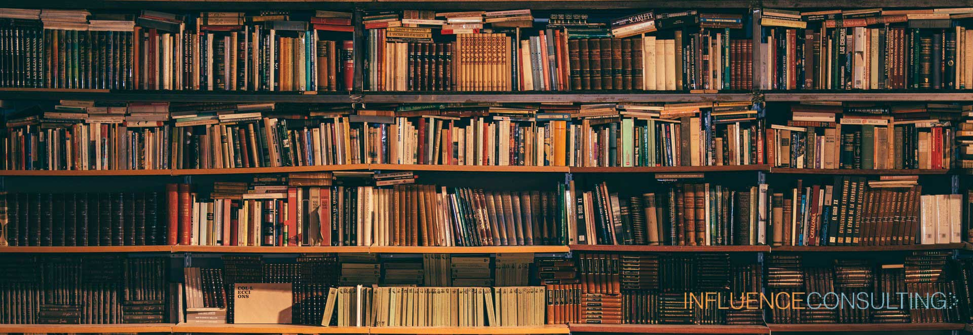 Influence Consulting | Our Document Library